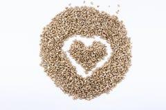 As sementes de girassol em um coração dão forma em um fundo branco Fotos de Stock