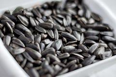As sementes de girassol que encontram-se em uma placa podem servir como um background_ Fotos de Stock