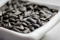 As sementes de girassol que encontram-se em uma placa podem servir como um background_ Imagens de Stock
