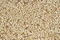 As sementes de Safflower fecham-se acima como o fundo Imagens de Stock Royalty Free