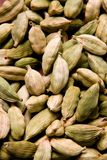 As sementes do cardamomo Imagem de Stock