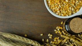 As sementes do milho fecham-se acima da imagem de fundo Fotos de Stock Royalty Free