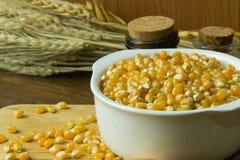 As sementes do milho fecham-se acima da imagem de fundo Imagem de Stock