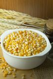 As sementes do milho fecham-se acima da imagem de fundo Imagens de Stock