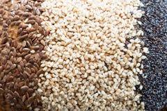 As sementes do pão fecham-se acima Fotografia de Stock
