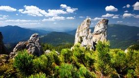 As senhoras balançam a montanha máxima no condado de Bucovina no dia de verão, Romênia imagens de stock