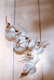 As sete bailarinas no assoalho Imagem de Stock