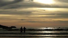 As silhuetas dos povos que andam no verão encalham no por do sol video estoque