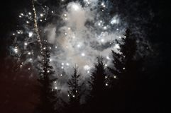 As sobras dos fogos de artifício iluminaram belamente o céu sobre as árvores imagens de stock royalty free