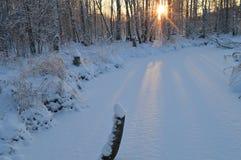 As sombras no rio branco da floresta da neve no nascer do sol Imagem de Stock