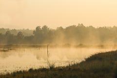Steam Rising on Waterhole at Dawn royalty free stock image