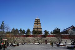 The Big Wild Goose Pagoda Xi`an stock photos