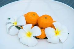 As tanjerinas frescas no prato branco decoram com flor Fotos de Stock