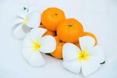 As tanjerinas frescas no prato branco decoram com flor Imagens de Stock Royalty Free