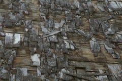 As telhas de madeira que permanecem no telhado de desmoronamento da construção formam o teste padrão intrincado Fotos de Stock Royalty Free