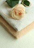 As toalhas e levantaram-se Foto de Stock