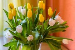 As tulipas amarelas e brancas saltam florescem o ramalhete da Páscoa das flores fotos de stock