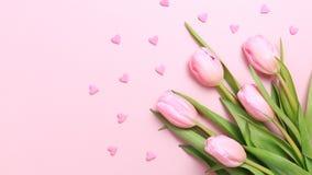 As tulipas cor-de-rosa com coração cor-de-rosa polvilham no fundo cor-de-rosa Fl imagem de stock