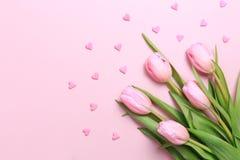 As tulipas cor-de-rosa com coração cor-de-rosa polvilham no fundo cor-de-rosa Fl fotos de stock royalty free