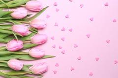 As tulipas cor-de-rosa com coração cor-de-rosa polvilham no fundo cor-de-rosa Fl fotografia de stock