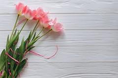 As tulipas cor-de-rosa serem de mãe dia ao ` s do dia ou das mulheres do ` s Imagem de Stock