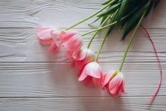 As tulipas cor-de-rosa serem de mãe dia ao ` s do dia ou das mulheres do ` s Foto de Stock Royalty Free