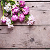 As tulipas da mola e a árvore de maçã florescem no fundo de madeira envelhecido Imagens de Stock