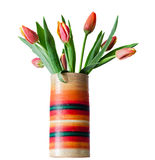 As tulipas vermelhas florescem em um vaso colorido, fim acima, fundo isolado, branco Imagem de Stock Royalty Free