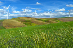As turbinas da exploração agrícola de vento brancas no monte contrastam a grama verde e o céu azul, wa Fotografia de Stock Royalty Free