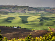 As turbinas eólicas no monte cobrem com campos de trigo fotos de stock royalty free