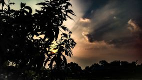 Rays of sun light and cloudy sky , leafs of tree. Rays of sun light and clouds in a morning during sunrise in the cloudy sky royalty free stock photos