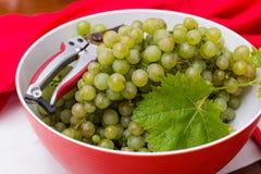 As uvas para vinho brancas que risling, aprontam-se para colher e fazendo o vinho Foto de Stock