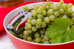 As uvas para vinho brancas riesling, aprontam-se para colher e fazendo o vinho Fotografia de Stock