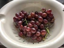 As uvas roxas dispararam usando a luz natural imagens de stock royalty free