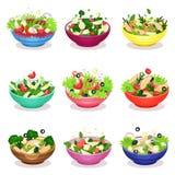 As várias saladas salada ajustam-se, das vegetais, das peixes e das carnes, ilustrações saudáveis do vetor do conceito comer ilustração do vetor