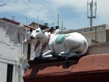 As vacas brancas da estátua dois da vaca do azevinho que sentam-se no telhado cobrem imagem de stock royalty free