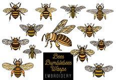 As vespas dos zangões da abelha do mel do bordado ajustaram o collectio do estilo do esboço Imagem de Stock Royalty Free
