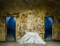 Asa caída do anjo Imagem de Stock Royalty Free