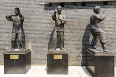 Asa Chun Kung Fu Imagens de Stock