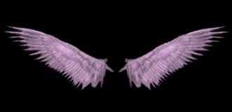 Asa cor-de-rosa do céu Imagens de Stock Royalty Free