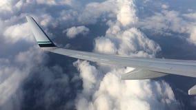 Asa de um vôo do avião acima das nuvens Os povos olham o céu da janela do plano, usando o transporte aéreo a vídeos de arquivo