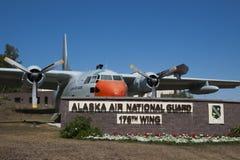 Asa do fornecedor de C-123 Fairchild 176th Imagem de Stock