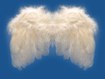 Asa dos anjos Imagens de Stock Royalty Free
