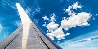 Asa no céu azul Fotografia de Stock