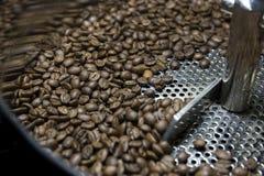 Asación del grano de café Fotos de archivo libres de regalías