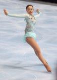 asada jpn毛短的冰鞋 库存图片