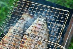 Asado a la parilla de pescados en hoguera Foto de archivo libre de regalías