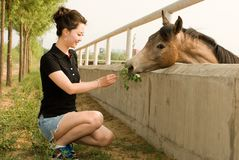 Asain girl. A pretty asain girl with horse in a farm Royalty Free Stock Photo