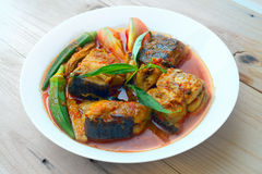 Asam Pedas, μαλαισιανή κουζίνα στοκ εικόνες