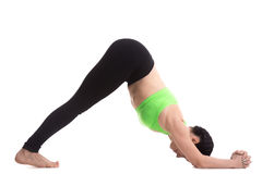 Asana di yoga del delfino fotografie stock libere da diritti